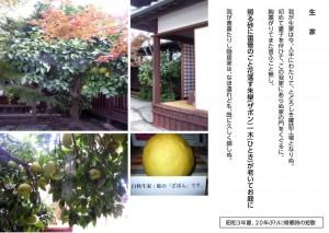 20151127_白秋ブログ